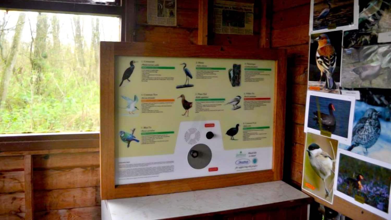 AudioSign Turn at Fairhaven Woodland and Water Garden Bird Hide