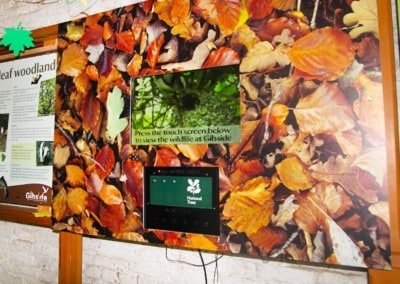 Live Video Player – Gibside National Trust