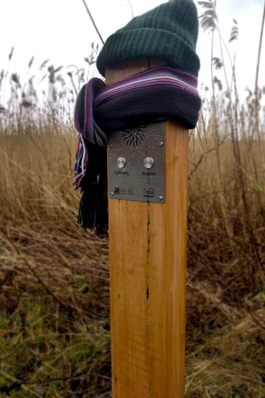 Solar Audio Post wrapped up in snow at RSPB Conwy